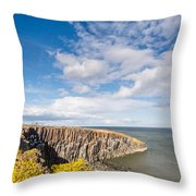 Gorse At Cullernose Point Throw Pillow