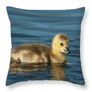 Gosling.. Throw Pillow