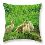 Gosling Shore Side Throw Pillow