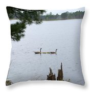 Goslings And Geese Throw Pillow