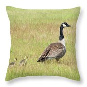 Goslings Following Mama Throw Pillow