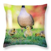 Goslings In The Park Throw Pillow