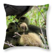Gosling's In The Shade Throw Pillow