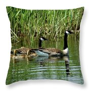 Goslings In Tow Throw Pillow