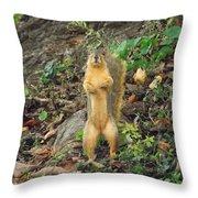 Got A Peanut? Throw Pillow
