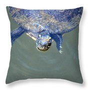 Got Any Food? Throw Pillow