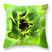 Got Bugged Throw Pillow