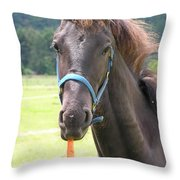Got Carrots Throw Pillow