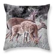 Humor Got Some Doe And Two Bucks Throw Pillow