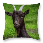 Got Something For Me? Throw Pillow