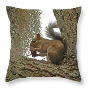 Gotta Have It Throw Pillow