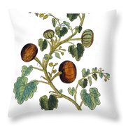 Gourd, 1735 Throw Pillow