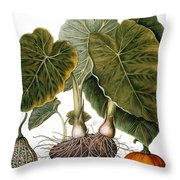 Gourd, Taro, & Pumpkin Throw Pillow