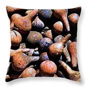 Gourds Galore Throw Pillow