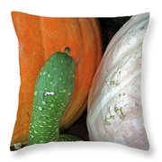 Gourds Throw Pillow