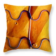 Government Cheese Throw Pillow