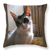Gowrie The Cat Throw Pillow