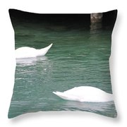 Grace And Charm Throw Pillow