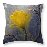 Earth To Heaven Throw Pillow