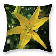 Grace Flowers Daylily Art Throw Pillow