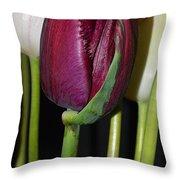 Graceful Beauty Throw Pillow