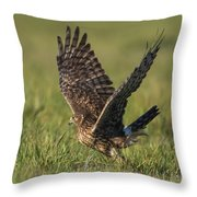 Graceful Departure Throw Pillow