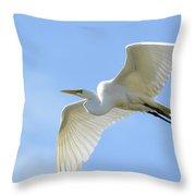 Graceful Flight Throw Pillow