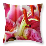 Graceful Lily Series 20 Throw Pillow
