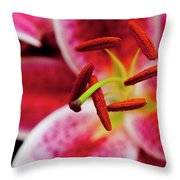 Graceful Lily Series 21 Throw Pillow