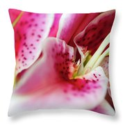 Graceful Lily Series 24 Throw Pillow