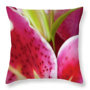 Graceful Lily Series 27 Throw Pillow