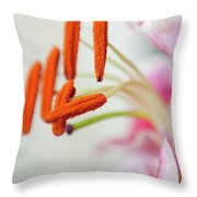 Graceful Lily Series 28 Throw Pillow