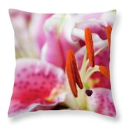 Graceful Lily Series 29 Throw Pillow