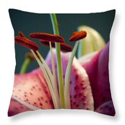 Graceful Lily Series 7 Throw Pillow