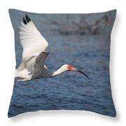 Graceful Spirit By Darrell Hutto Throw Pillow