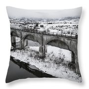 Graceful Waterways Throw Pillow