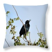 Grackle Cackle Throw Pillow