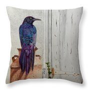 Grackle Greetings Throw Pillow