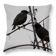 Grackles On Branches  Throw Pillow