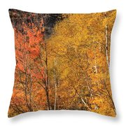 Grafton Notch Foliage Throw Pillow