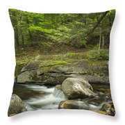 Grafton Notch Maine Throw Pillow