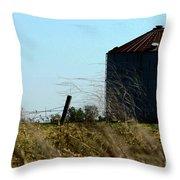 Grain Bin Throw Pillow