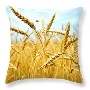 Grain Field Throw Pillow by Elena Elisseeva