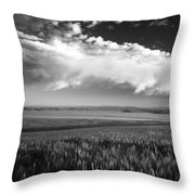 Grain Field Throw Pillow