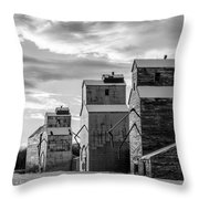 Grainery Row Throw Pillow