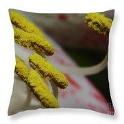 Grains Of Pollen Throw Pillow