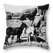 Grand Canyon: Donkeys Throw Pillow