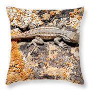 Grand Canyon Lizard Throw Pillow