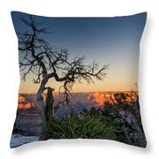 Grand Canyon Lone Tree At Sunset Throw Pillow