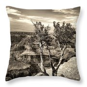 Grand Canyon Lone Tree Throw Pillow